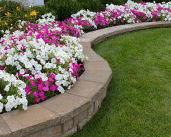 Stone retaining wall flower bed